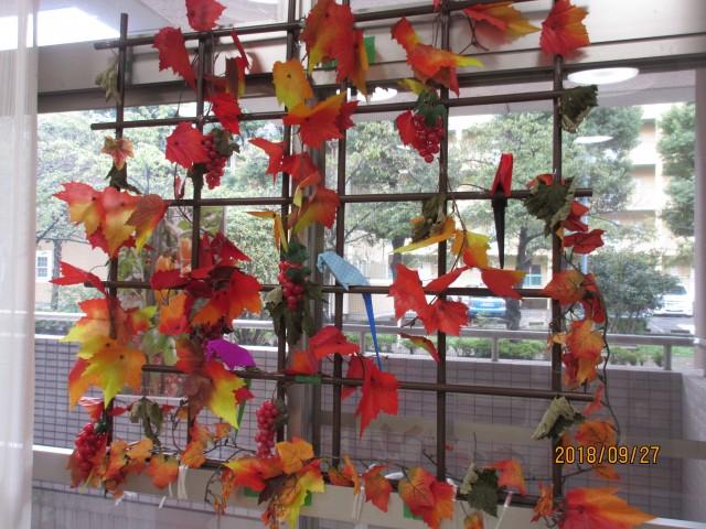 もうすぐ紅葉がきれいな季節ですね!