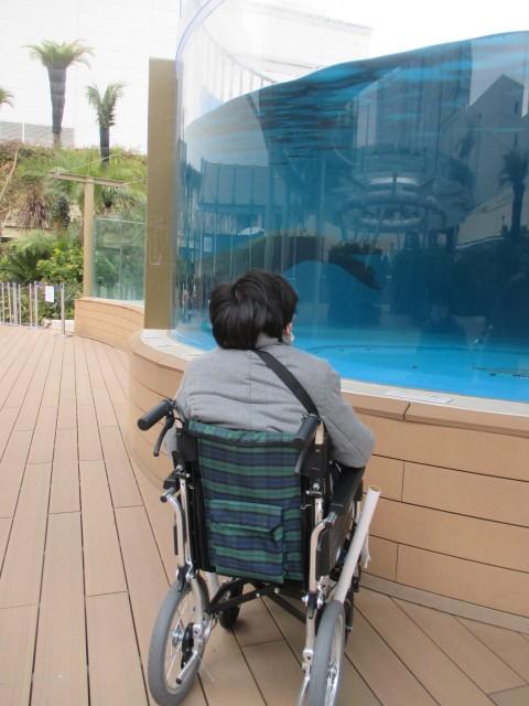 新しい車椅子でサンシャイン水族館に行きました。